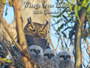 2016-Wings-Over-Bolsa-Cover-web