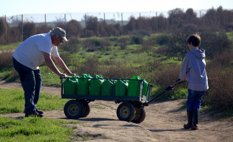 Stewards first habitat restoration day of 2015