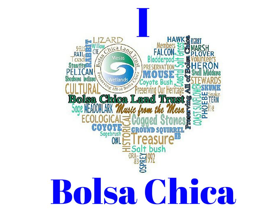 IBolsa Chica