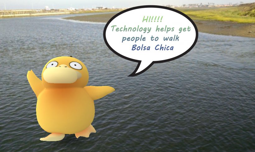 Technology helps get people to walk Bolsa Chica