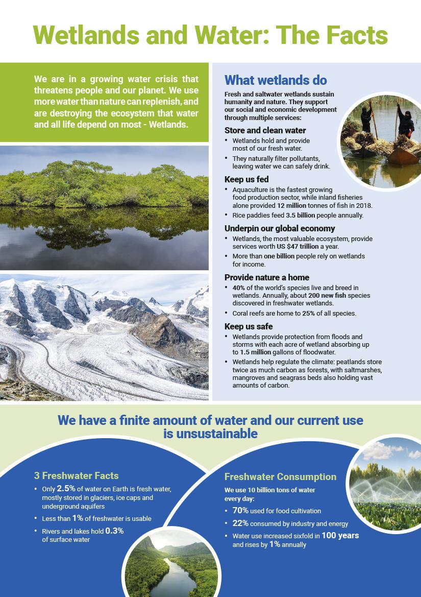 world wetlands poster