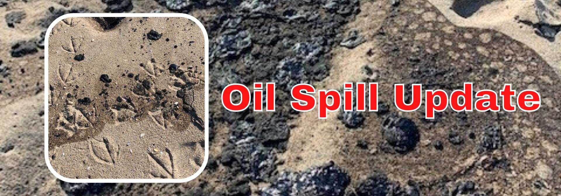 oil spill update